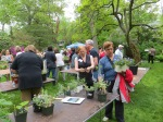 a Plant Sale in Progress