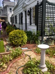 Linda Chisolm's Garden