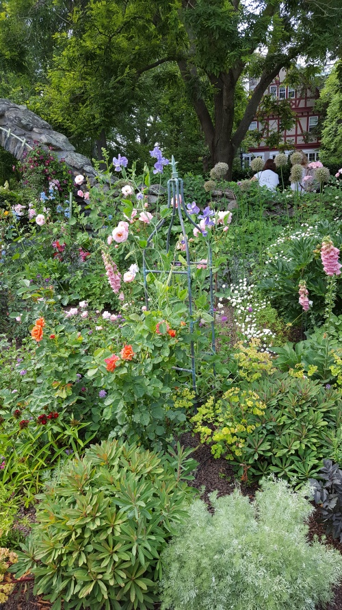 Blithewold garden