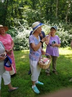 Yolanda's Garden Hop 2